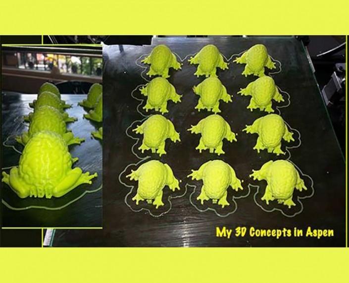 Aspen Brain Lab 3D printed brain frogs